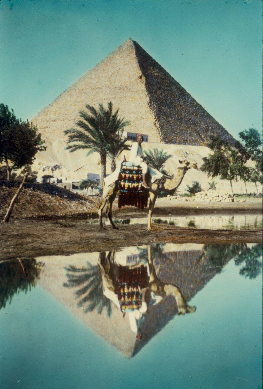 Гиза. Пирамида и всадник на верблюде. 1950