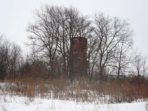 Башня дворца Кожиных