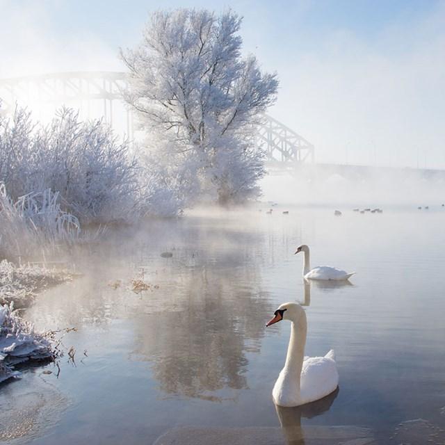 100 самых красивых зимних фотографии: пейзажи, звери и вообще 0 10f5bc f7134eb6 orig
