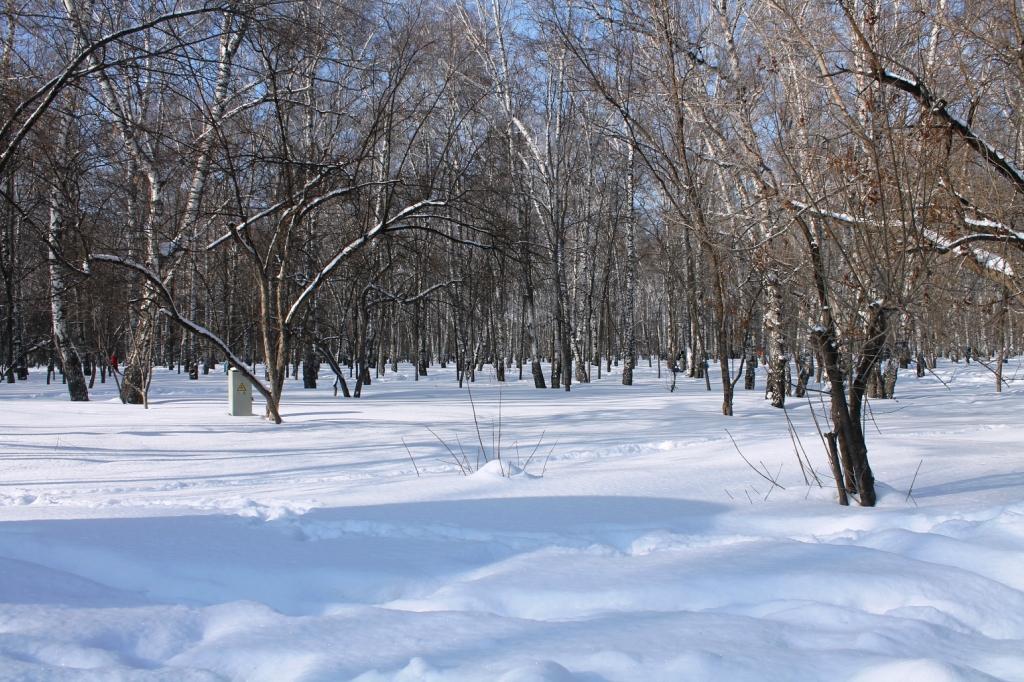 Масленица в Новосибирске