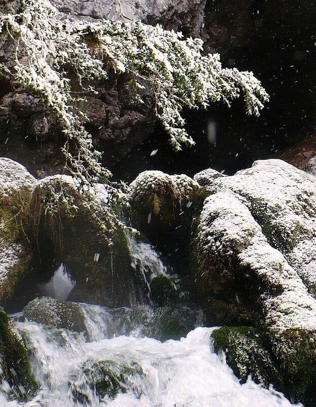 Фотограф Алексей Значков. Гуамское ущелье 06.02.2010 (301) - копия.JPG