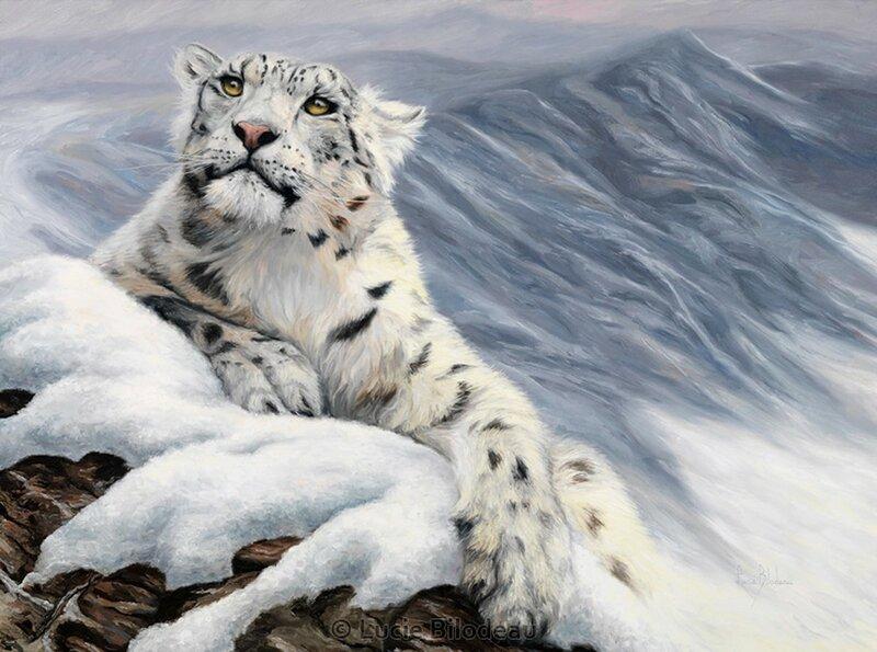 Люси Билоду: Кошки, леопарды и призраки