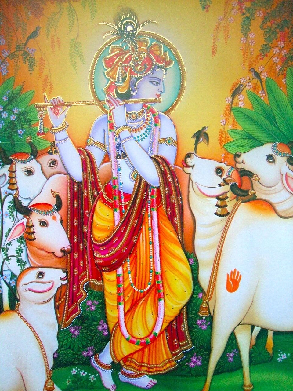 Говинда - покровитель коров, Джайа Шри Кришна!
