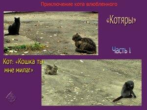 Приключения кота влюблённого. Часть 1