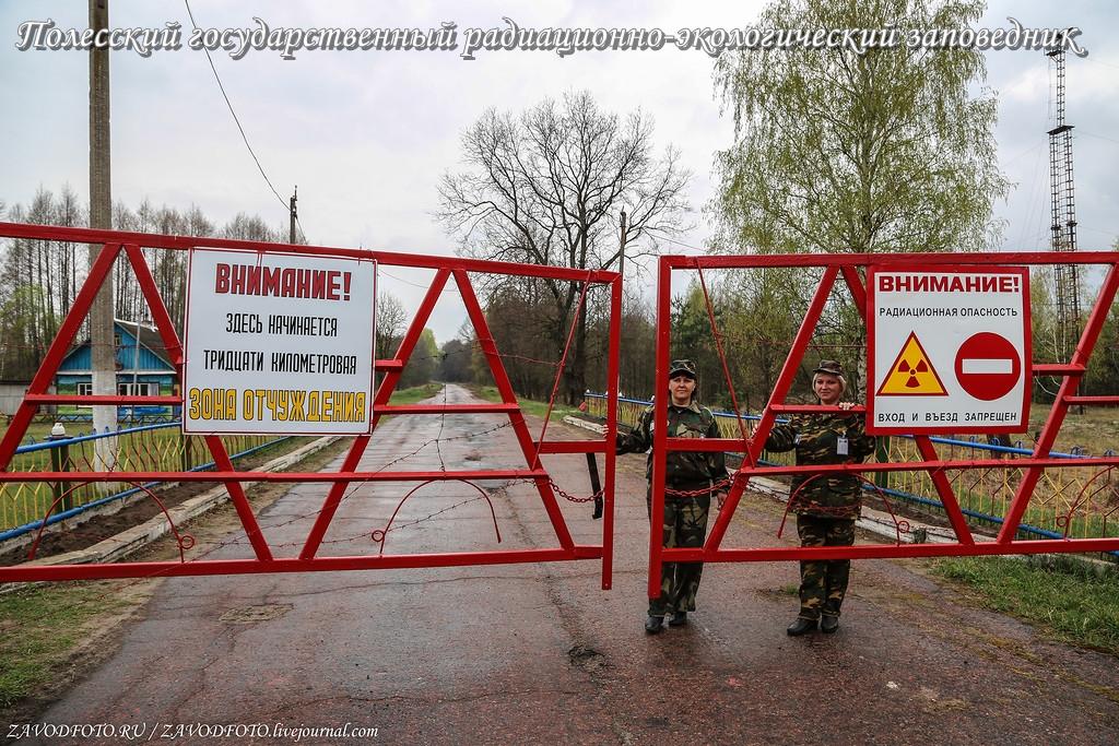 Полесский государственный радиационно-экологический заповедник.jpg