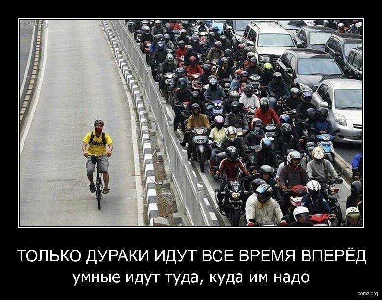 119395-2011.12.20-11.26.51-bomz.org-demotivator_tolko_duraki_idut_vse_vremya_vperied_umniye_idut_tuda_kuda_im_nado.jpg