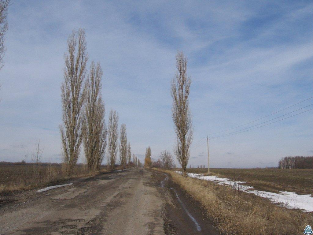 Дорога в Люджу