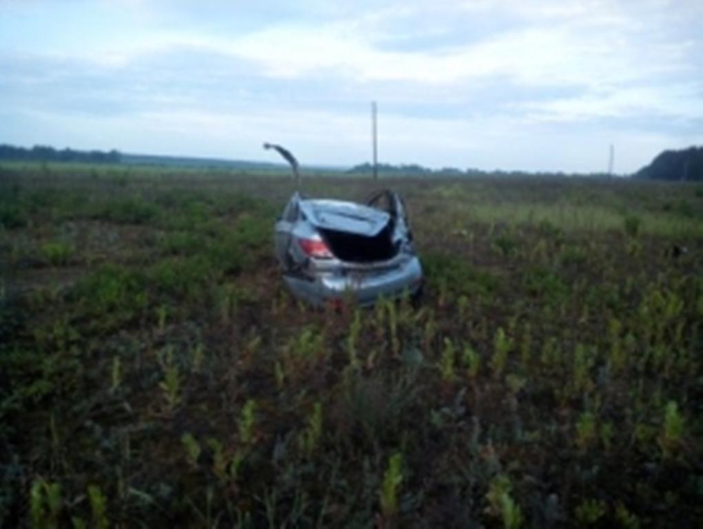 ВДТП слошадью вНижегородской области погибли три человека
