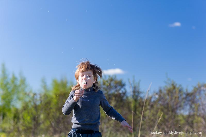 child blowing dandelion