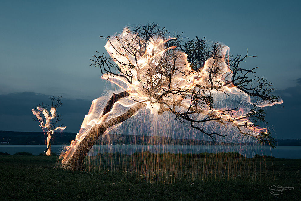 Light Appears to Drip from Trees in these Long-Exposure Photos by Vitor Schietti (6 pics)