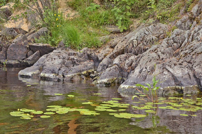 Река Тохмайоки