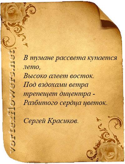 стихи о дицентре