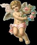 RR_Cupid_Element01.png