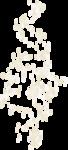 «ELEGANT»  0_813c1_409a5b1a_S