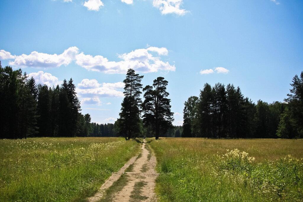 http://img-fotki.yandex.ru/get/33/56950011.58/0_70356_6197d1ee_XXL.jpg