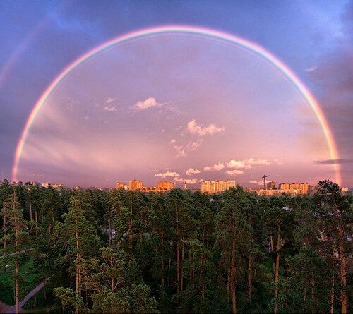 rainbow wow!