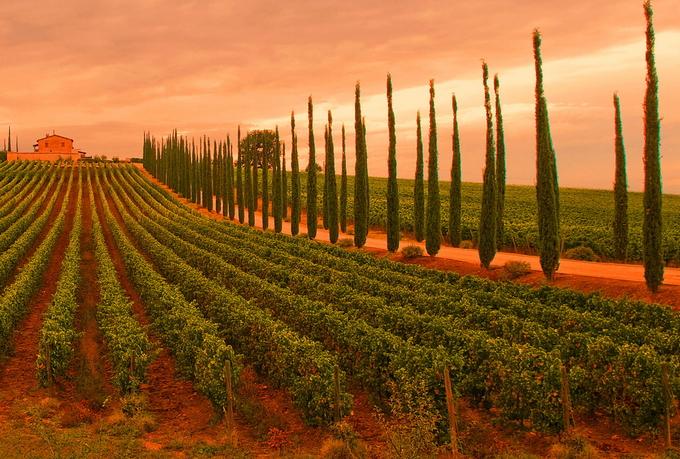 Тёплые пейзажи Италии от Стефано Креа 0 127556 d27b8791 orig