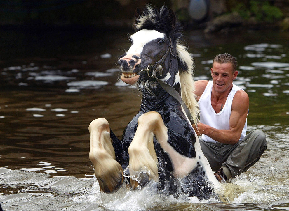 3. 3-летний посетитель на ярмарке лошадей, 6 июня 2013. (Фото Christopher Furlong):