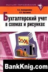 Книга Бухгалтерский учет в схемах и рисунках pdf 14,9Мб