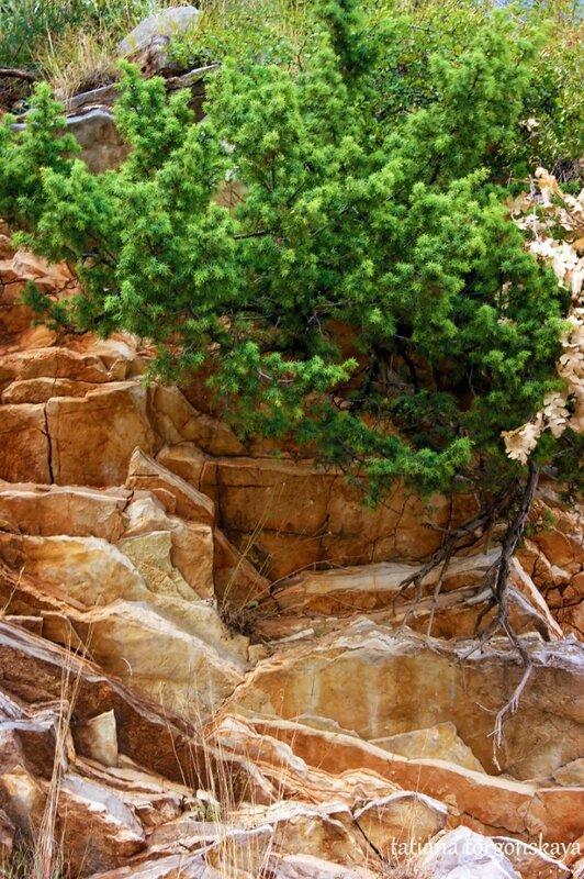 Фрагмент горы