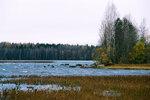 """Проверка залива """"морды-камня"""" 12.10.2008"""