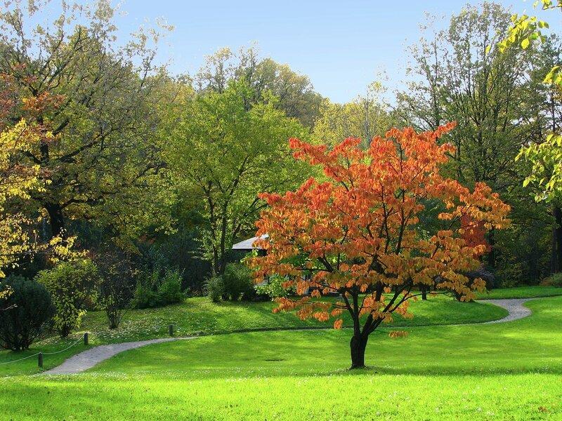 Осенний зиг-заг