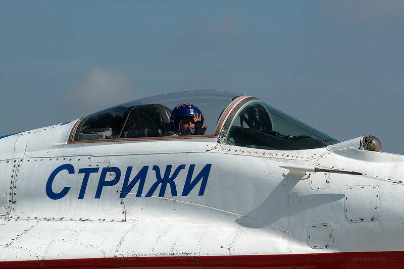 Микоян-Гуревич МиГ-29 (05 синий) D807751