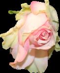 priss_cupid_rosepink1.png