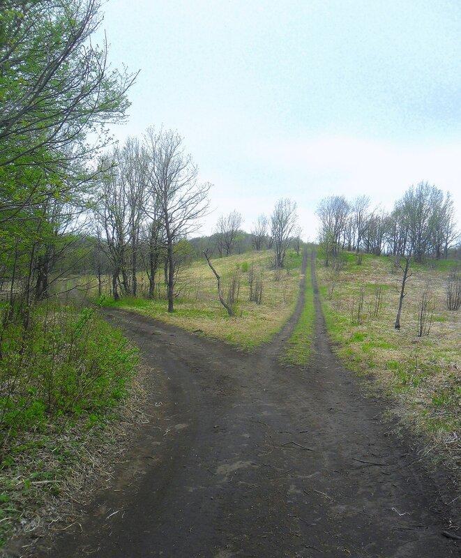 Дорога ...SAM_6827.JPG