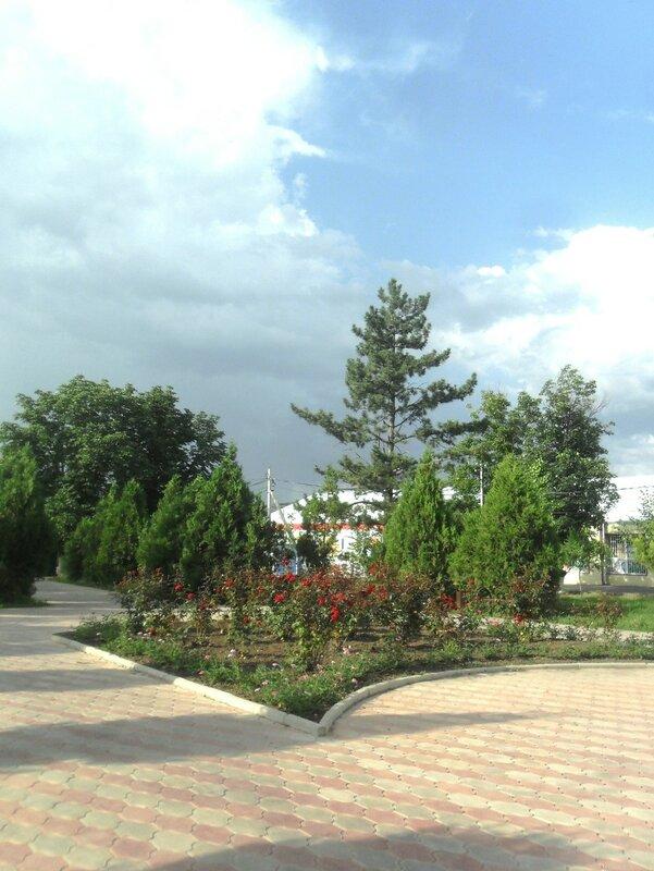 В Стародеревянковской ... SAM_8132.JPG