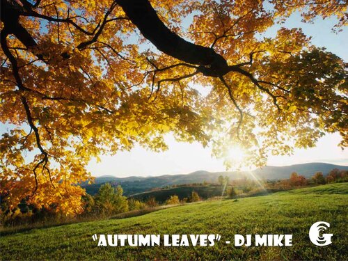 ArtCafe Gallery present ������� ������ #6 - mixed by dj Mike