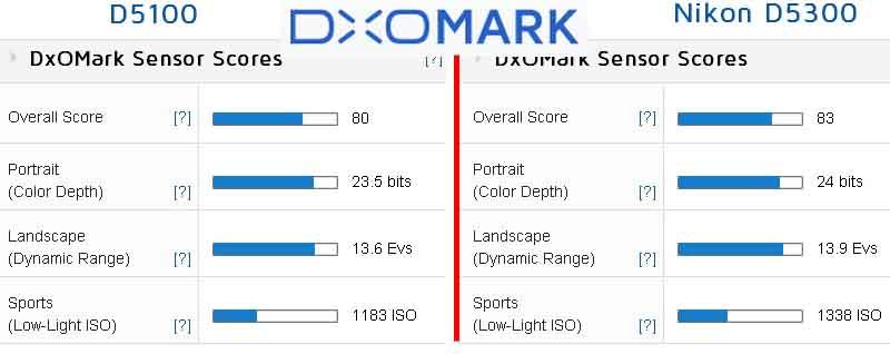 Сравнение показателей Nikon D5100 и D5300