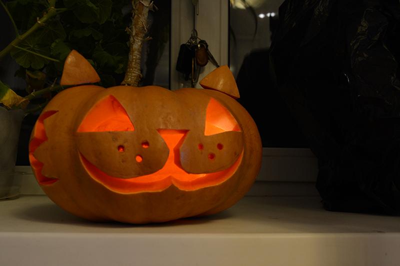 хеллоуин просто котик