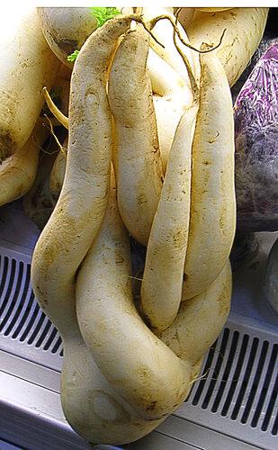 Китайская редька лобо
