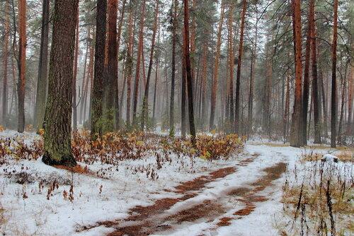Лежит недолго первый снег...