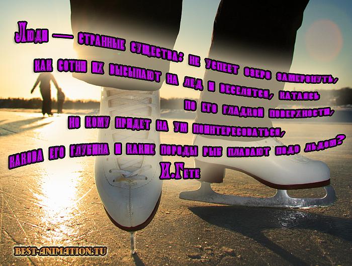 Цитаты великих людей - Величие и ничтожество человека - Люди — странные существа...