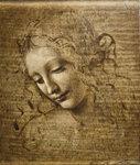 Leonardo Da Vinci La Scapiliata.jpg