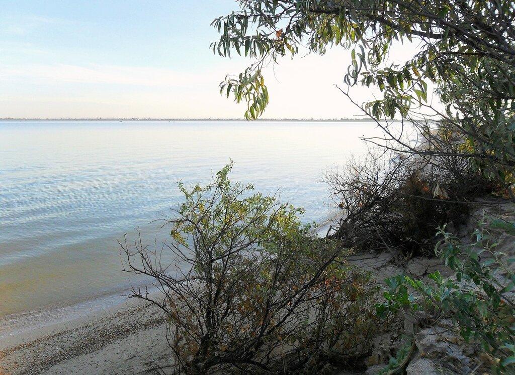 На утреннем берегу ... SAM_2280.JPG