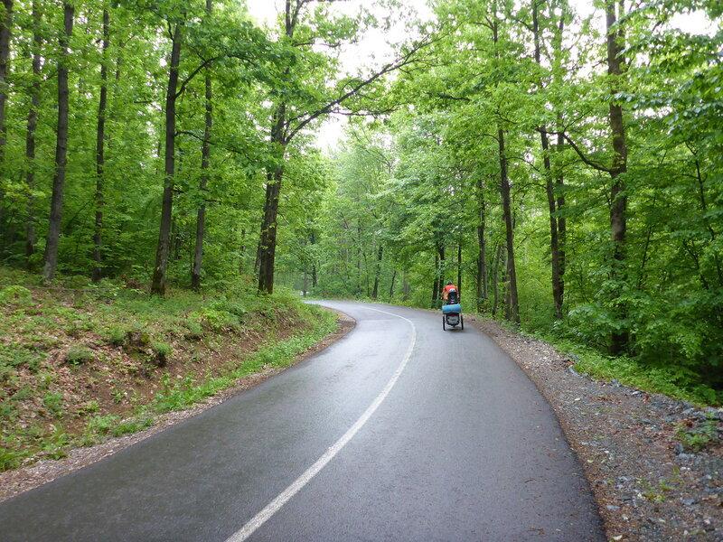 дорога в горах из Врнячка Баня по буковому лесу