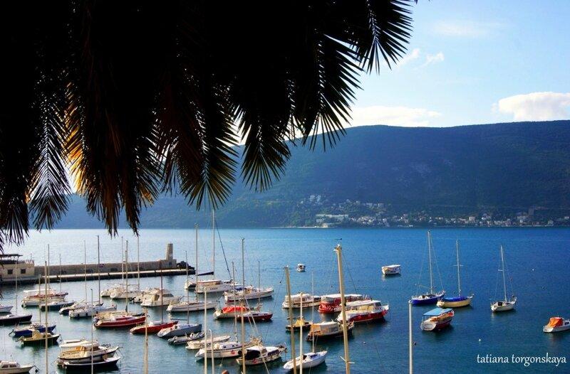 Вид на городскую гавань