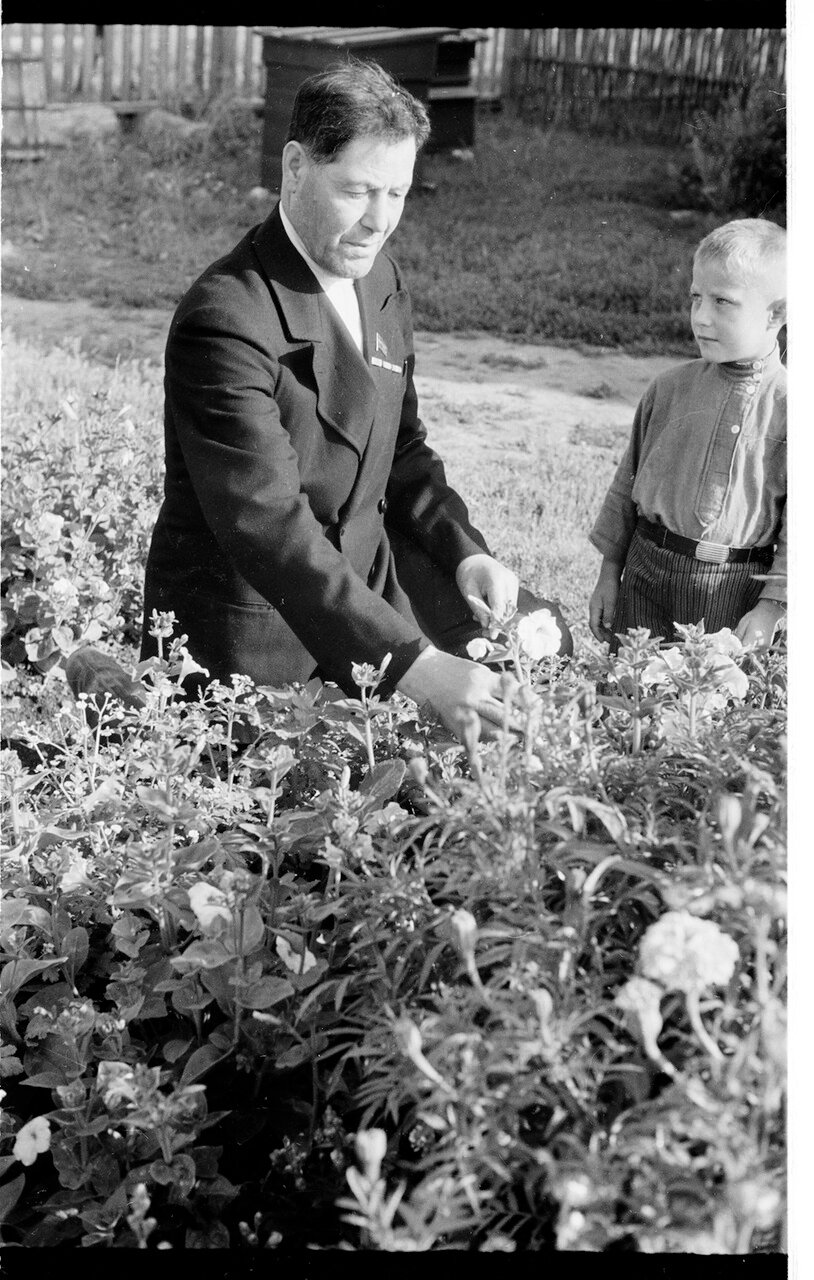 Лауреат Сталинской премии зоотехник Штейман