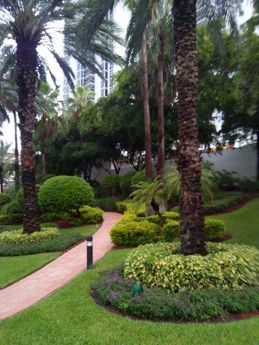 Майами. В тени пальм отеля Ramada Plaza