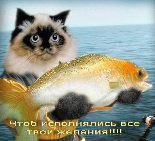 http://img-fotki.yandex.ru/get/3303/irinabekasova.1/0_1c54a_35a6a890_L