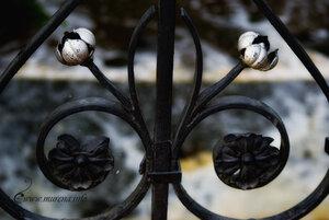 Кружево ограды