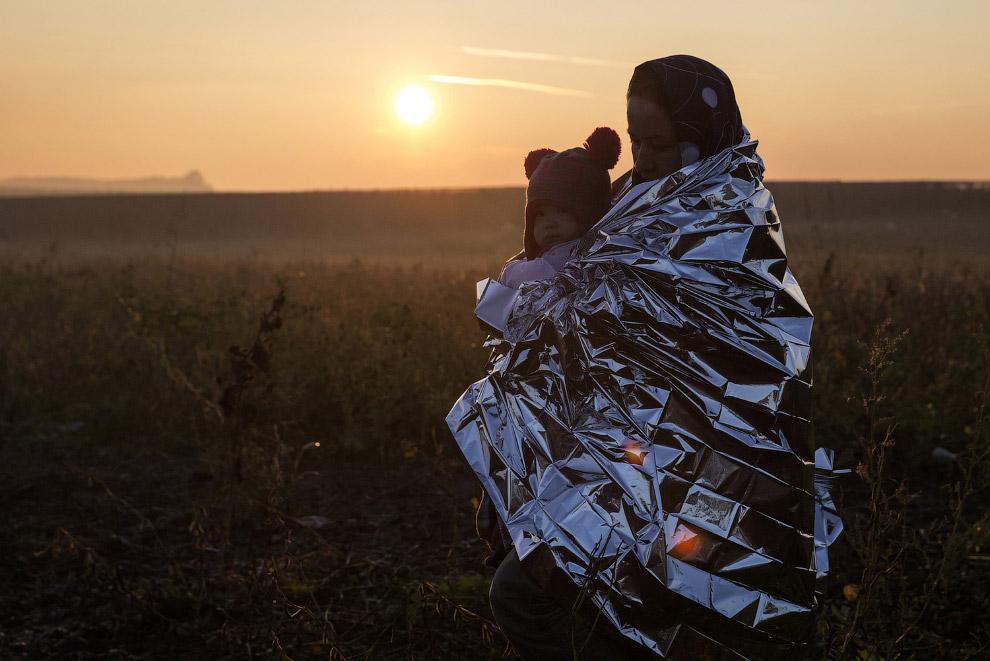 «За нынешней волной миграции, когда в Европу едут в основном мужчины, будет вторая, когда за мужчина