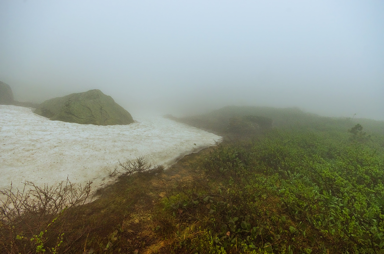 Снег и туман