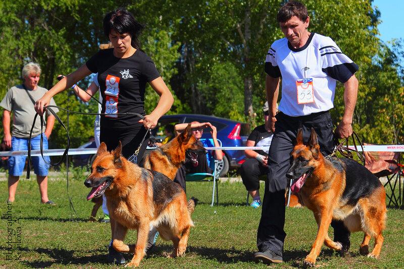 http://img-fotki.yandex.ru/get/3304/49469740.3/0_16dd93_9340cafe_XL.jpg