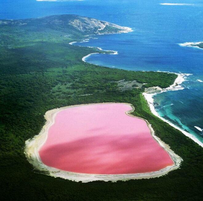 Озеро Хиллер. Австралия