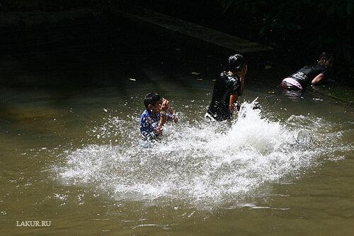 дети водопад