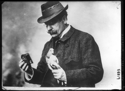 julius_neubronner_with_pigeon_and_camera_1914-500x363.jpeg